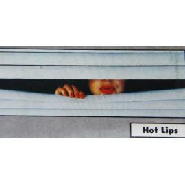 Sonnenschutz für die Frontscheibe Motiv Hot Lips (mit Fehlern)